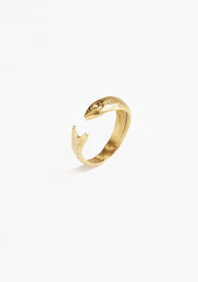 BONA CALVI - Anchovy ring in yellow bronze