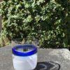 Bicchieri collezione Murano Carlo Moretti modello Bora base bianco e blu